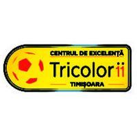 en centru-de-excelenta-timisoara-logo-vector-01-300x212